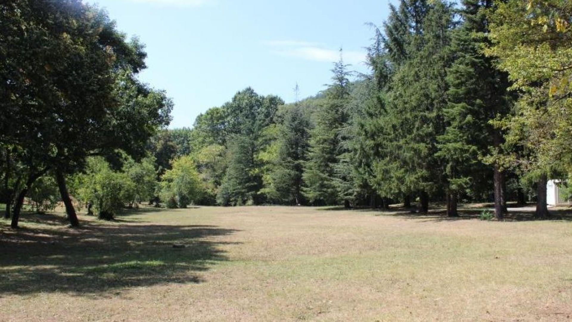 Тялото на обесен мъж е открито тази сутрин в парк