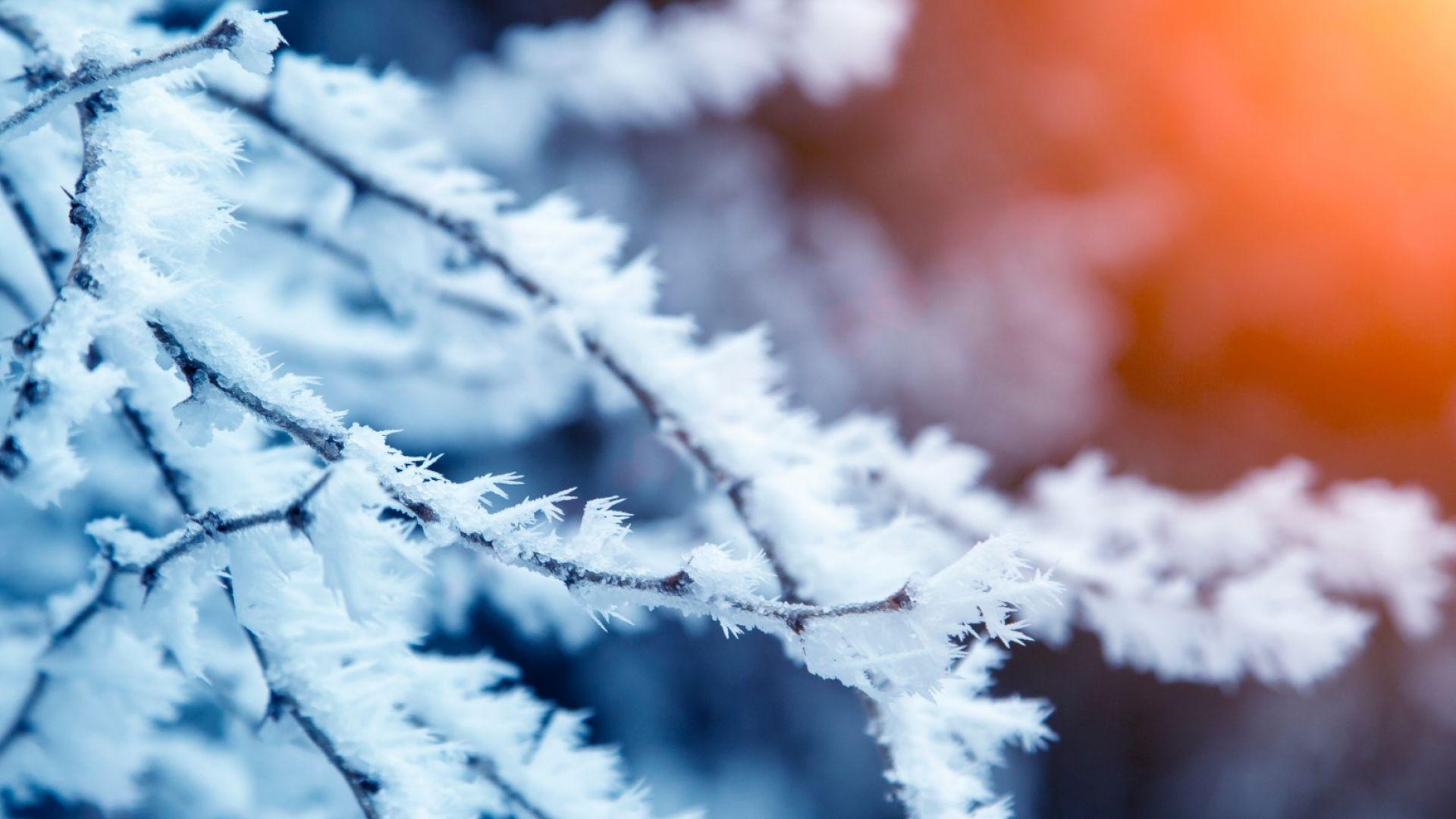Опасно студено време в 12 области в страната