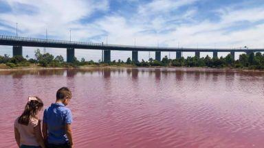 Езеро в Мелбърн стана розово (видео)