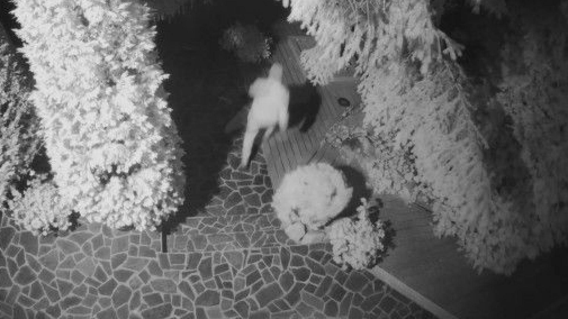 Снимка: Емилиян Гебрев: Месец след сигнала за отравянето опитаха да влязат в къщата ми