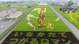 Японци рисуват с посеви в оризовите полета