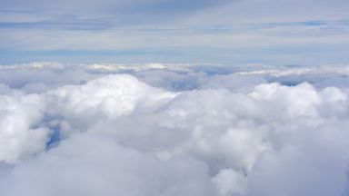 Затоплянето застрашава ключов вид облаци