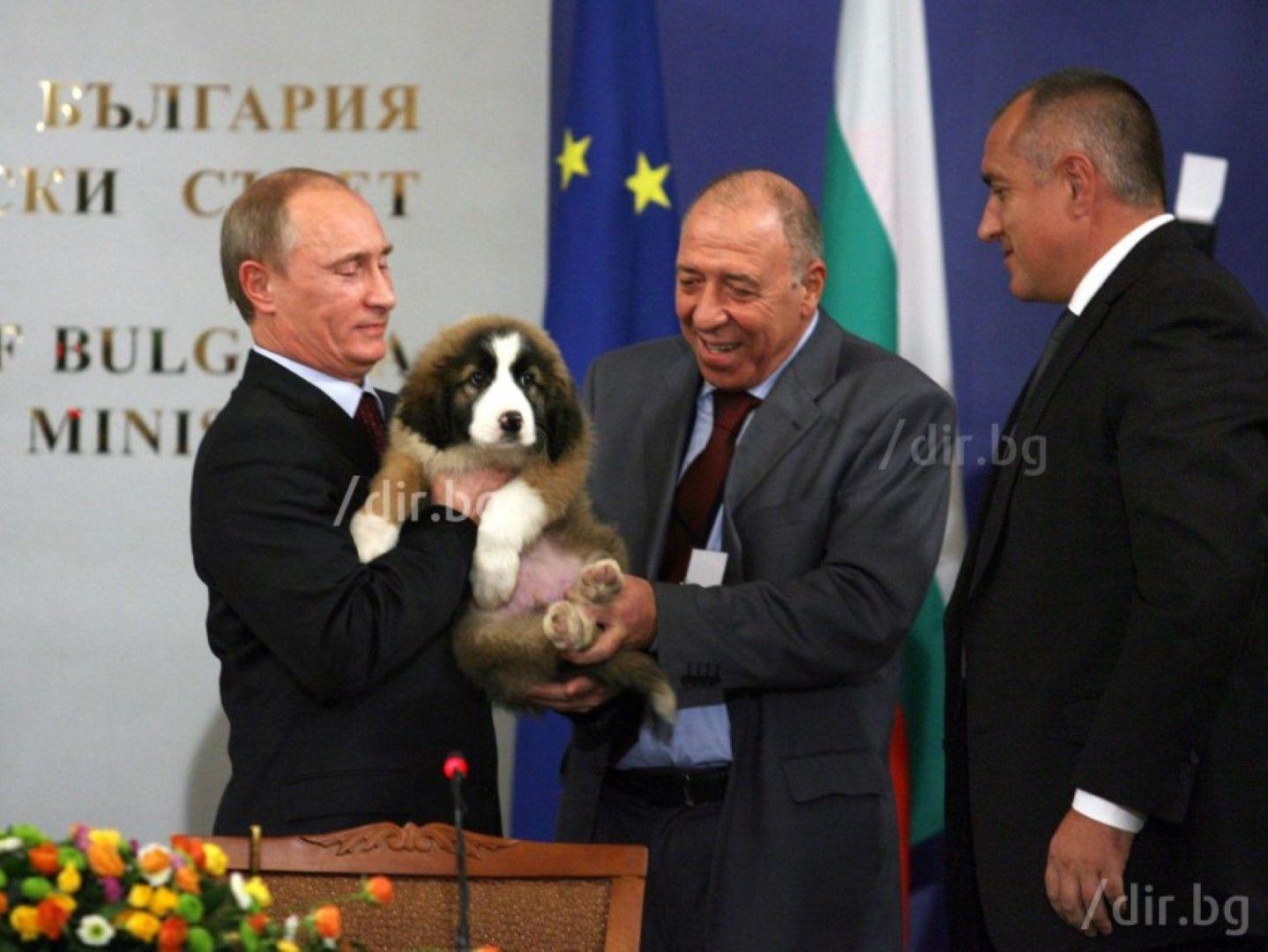 Владимир Путин получава подарък българска овчарка от Бойко Борисов, 13 ноември 2010 г.
