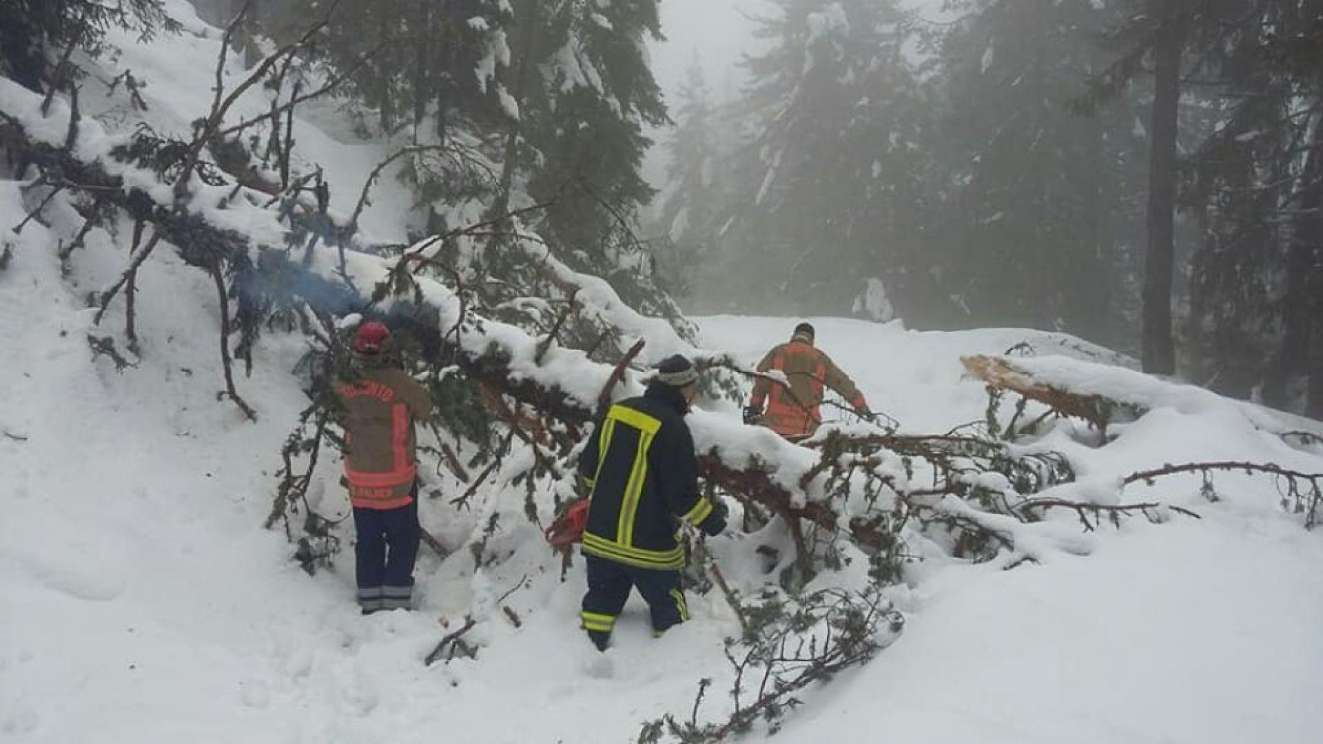 Повече от месец малък хотел в Родопите е в снежен плен