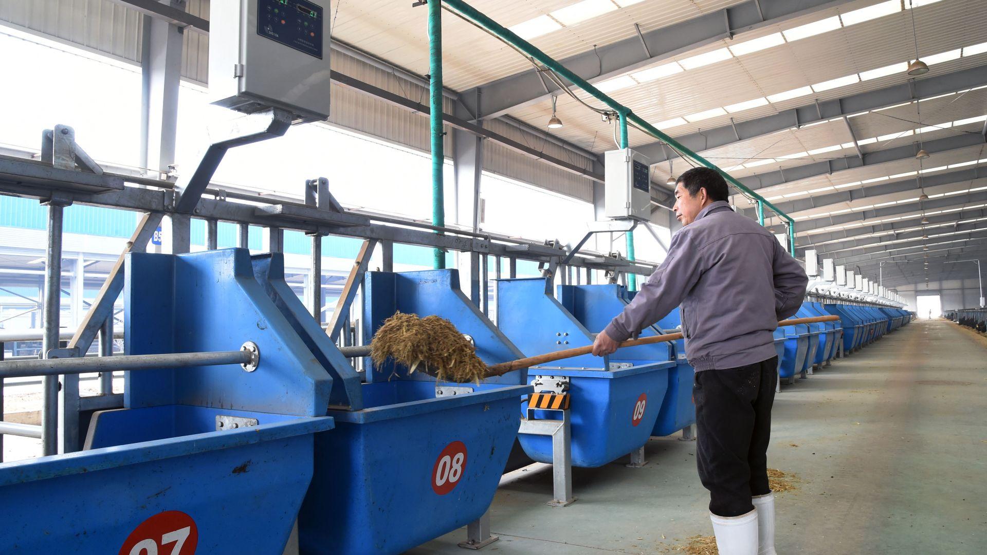 Производството на Китай расте с 6,3%