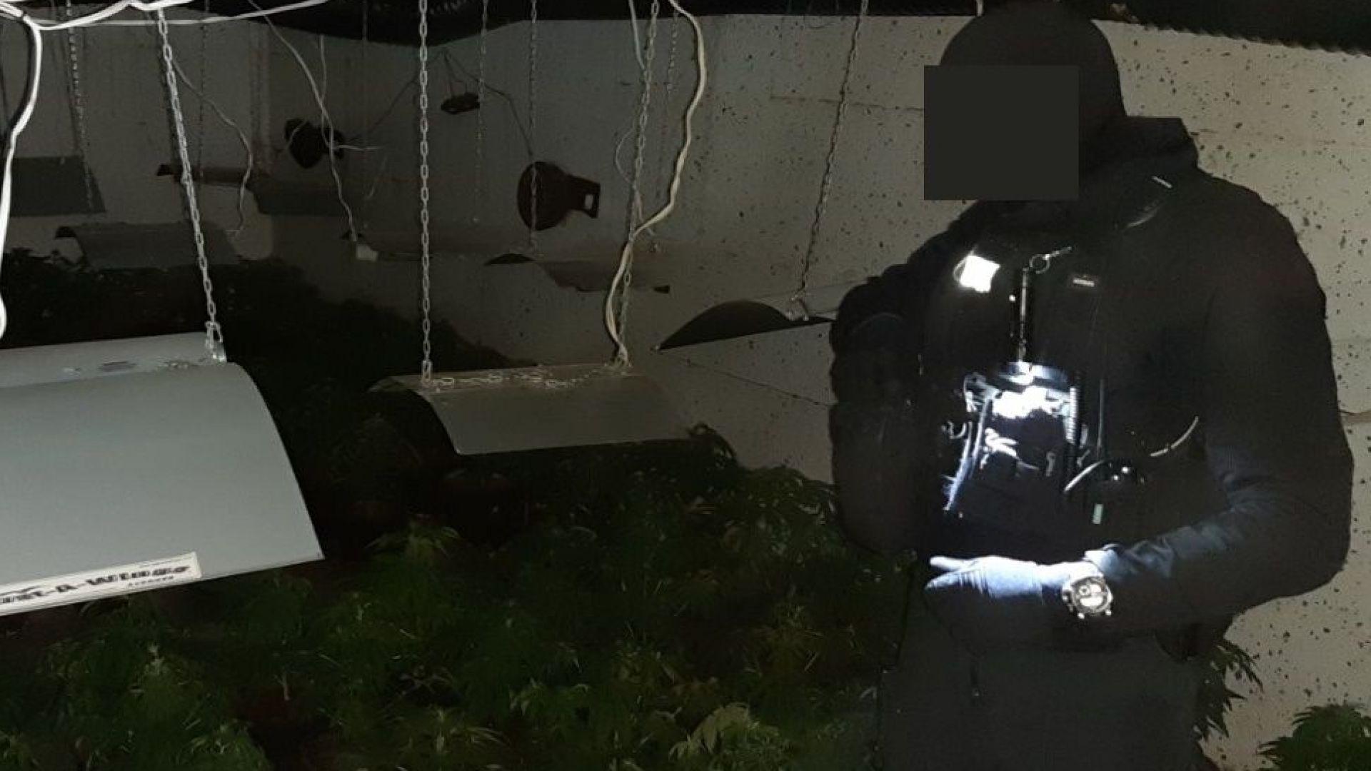 Разбиха модерна наркооранжерия в София, до нея се стигало с 40-метров тунел (снимки/видео)