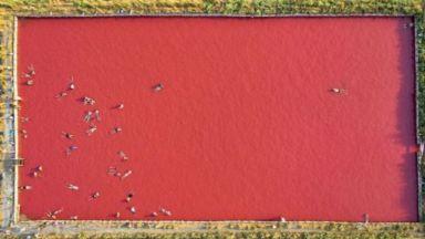 Снимка на бургаските солници спечели наградата на Световната фотографска организация