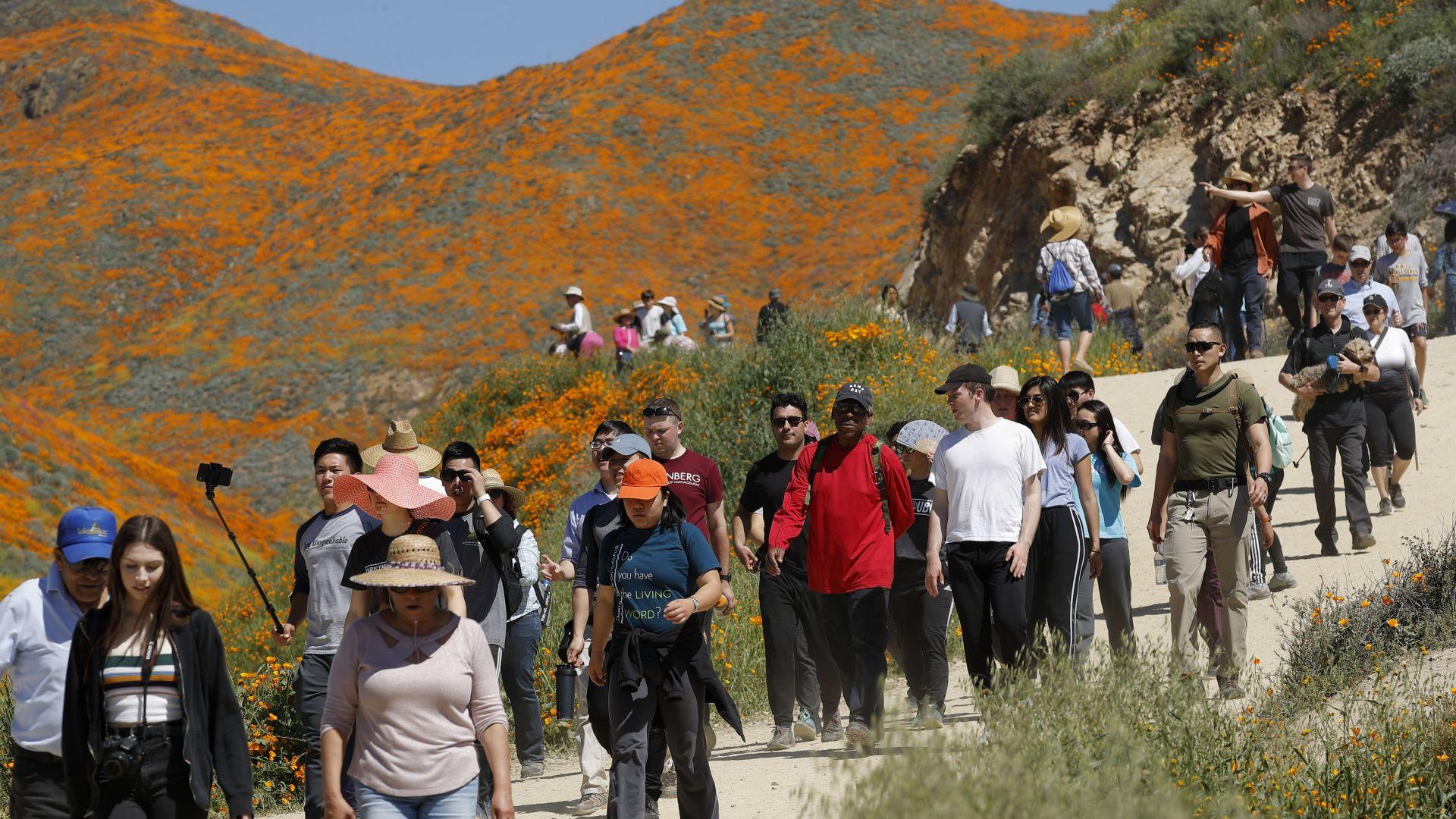 Струпването на десетки хиляди туристи край градчето Лейк Елсинор в