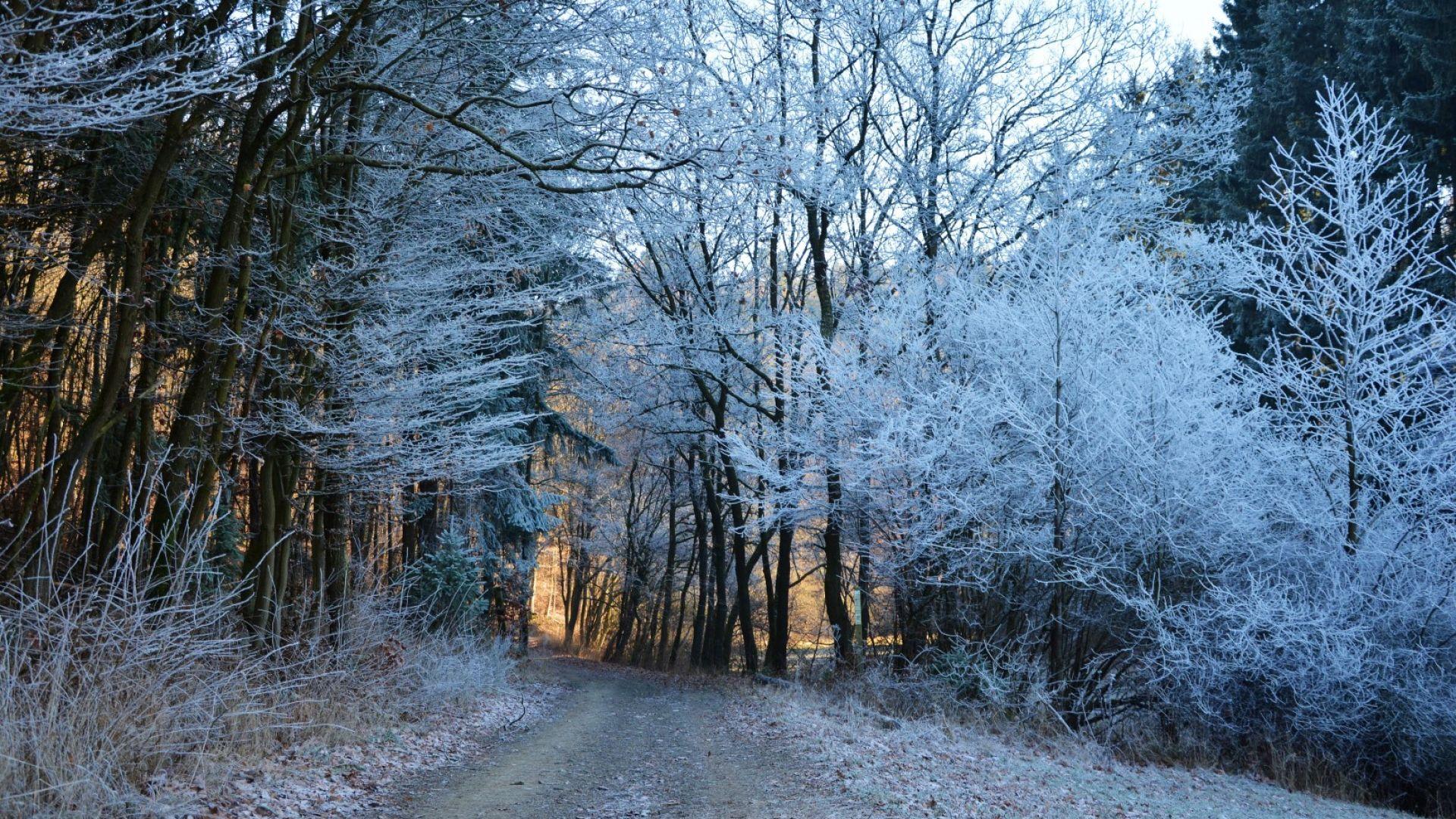Без промяна: хладно, с превалявания от дъжд и сняг поне още седмица