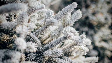 След леденото утро днес, температурите скачат до 20 градуса през уикенда