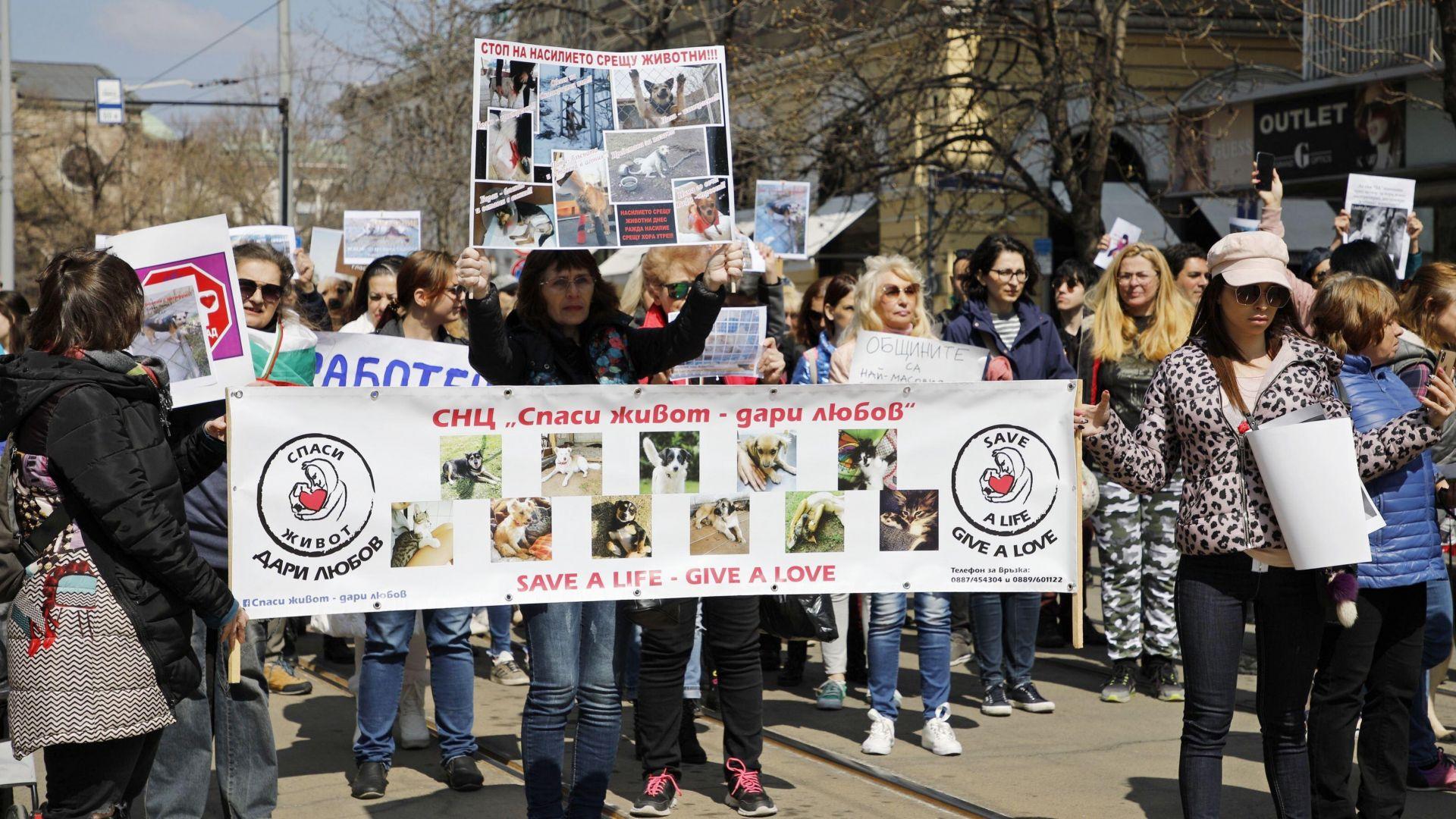 Протест в София срещу насилието над животни