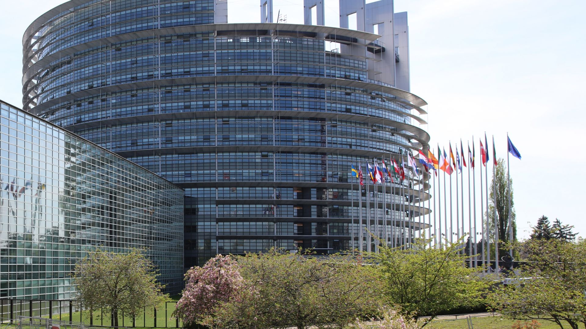 Вебер и Тимерманс с апел към прогресивните сили за обединение в ЕП