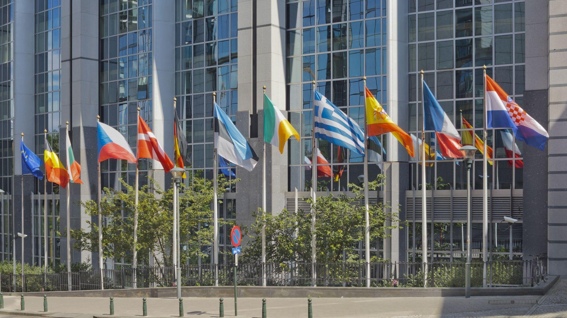 Необичайните кандидати за новия Европарламент (снимки)