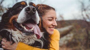 Защо собствениците на кучета са по-щастливи от стопаните на котки
