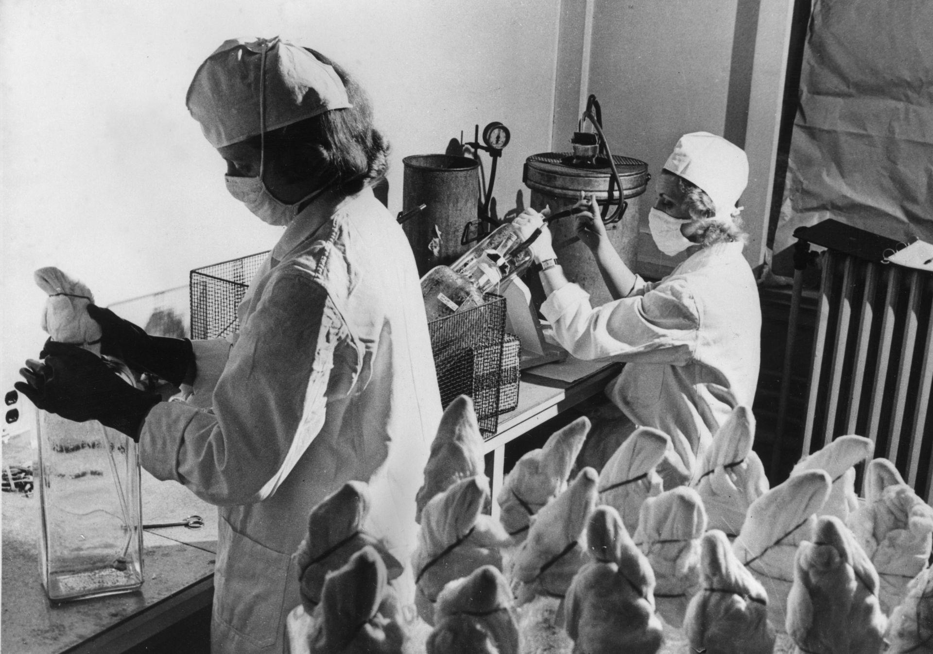 През 1956 година започва масовата ваксинация на деца