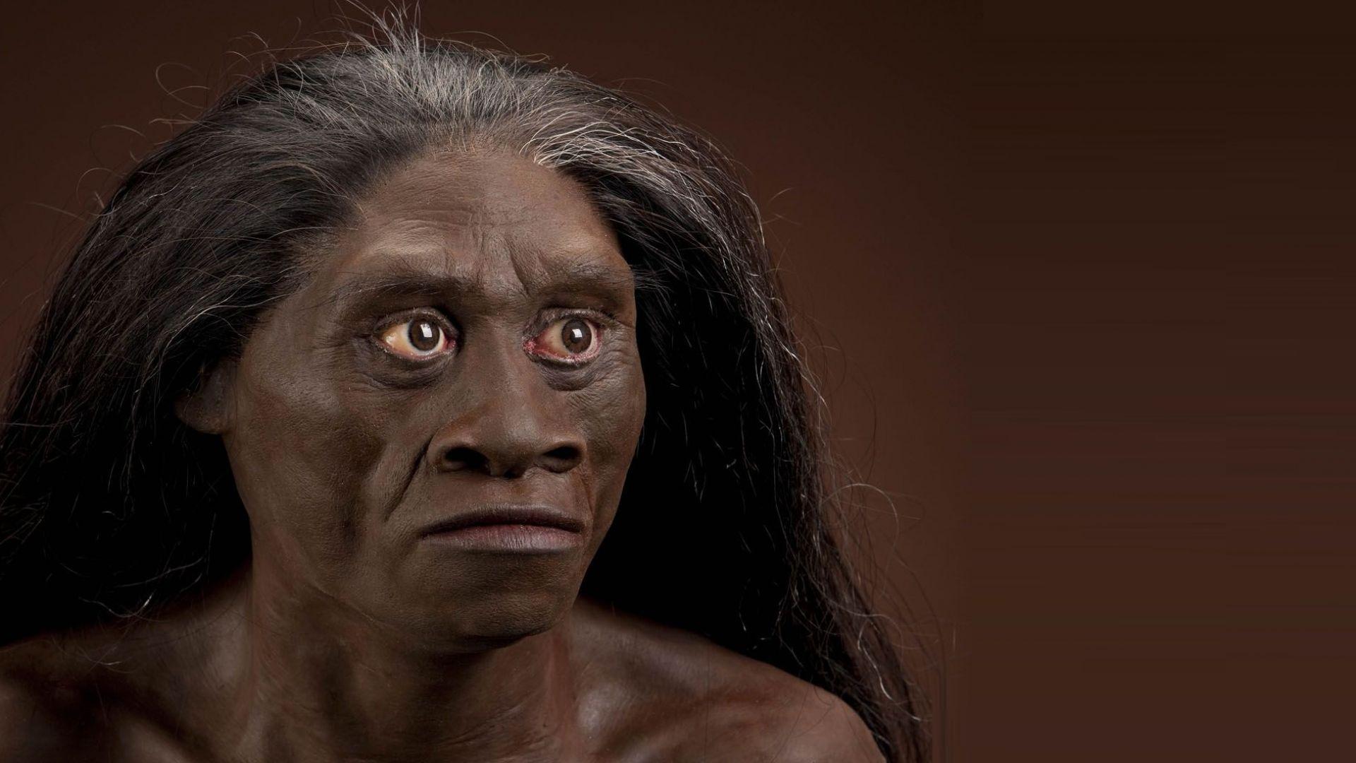 Откриха неизвестен досега братовчед на Хомо сапиенс
