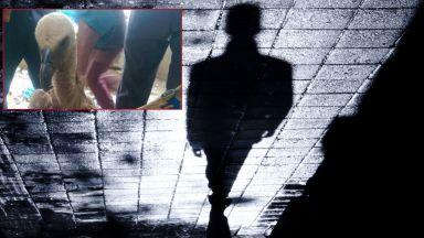 Йемен заподозря в шпионаж български лешояд