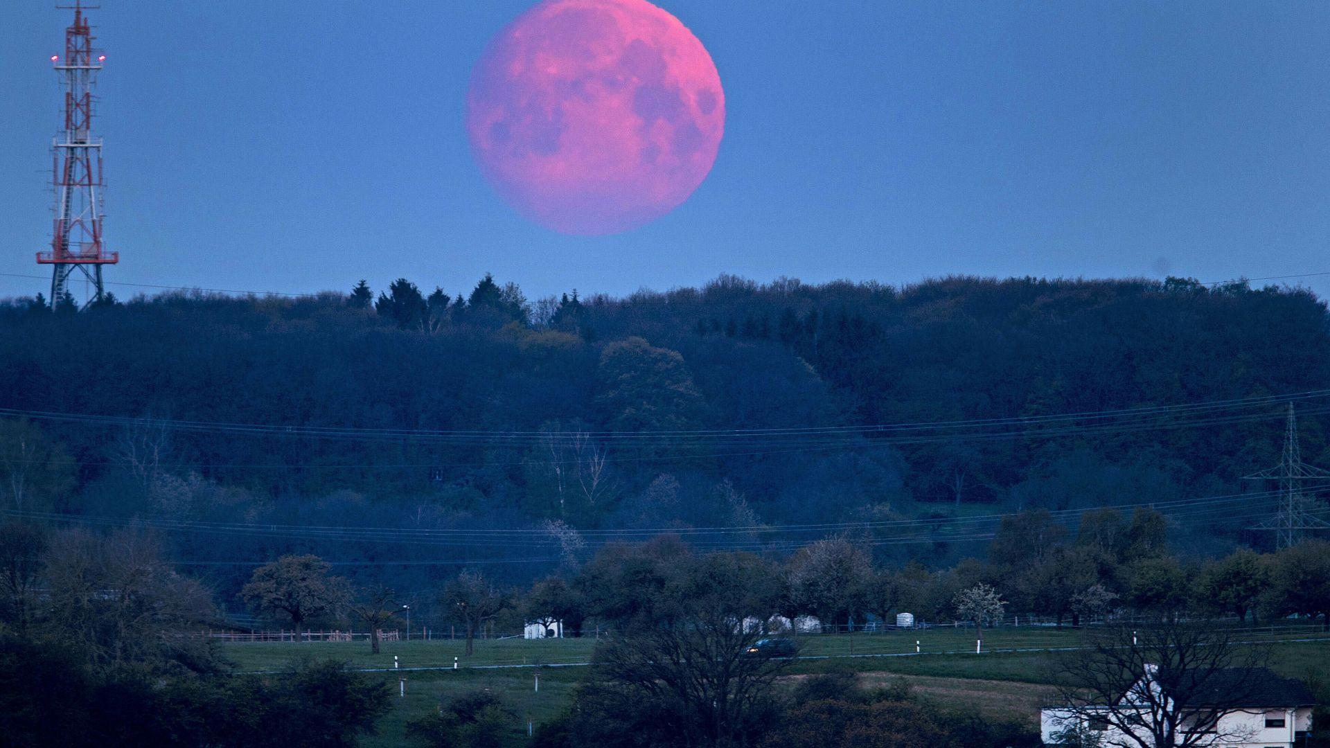 """""""Розова Луна"""" озарява априлското небе"""