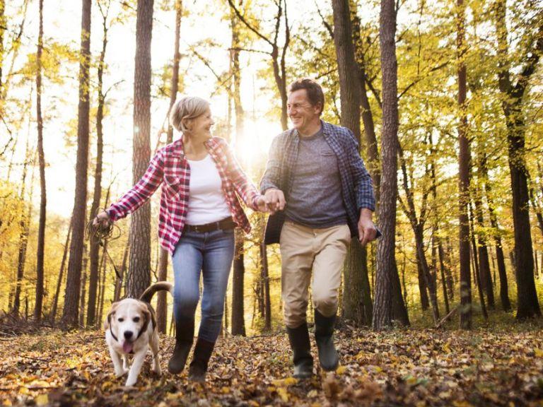 Собственици на кучета 4 пъти по-често покриват изискванията за физическа активност