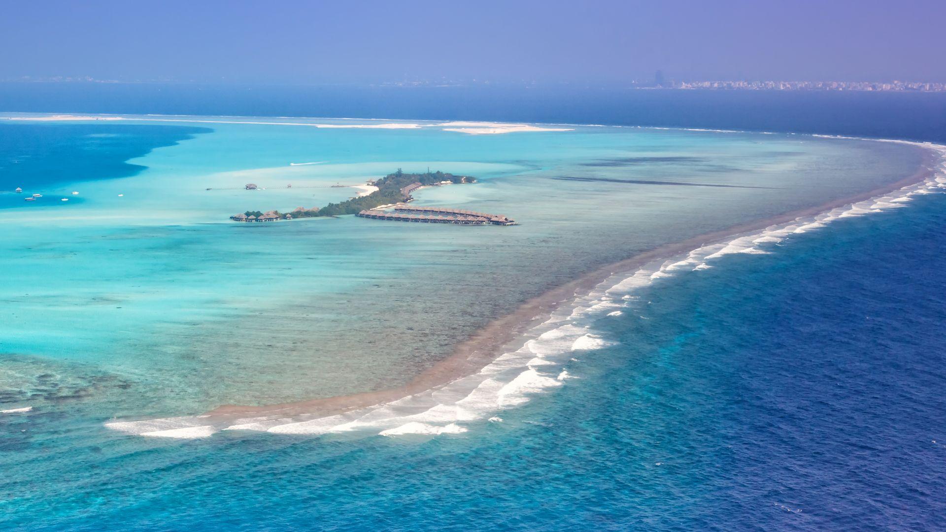 Глобалното затопляне пълзи и към дъното, убивайки коралите (видео)