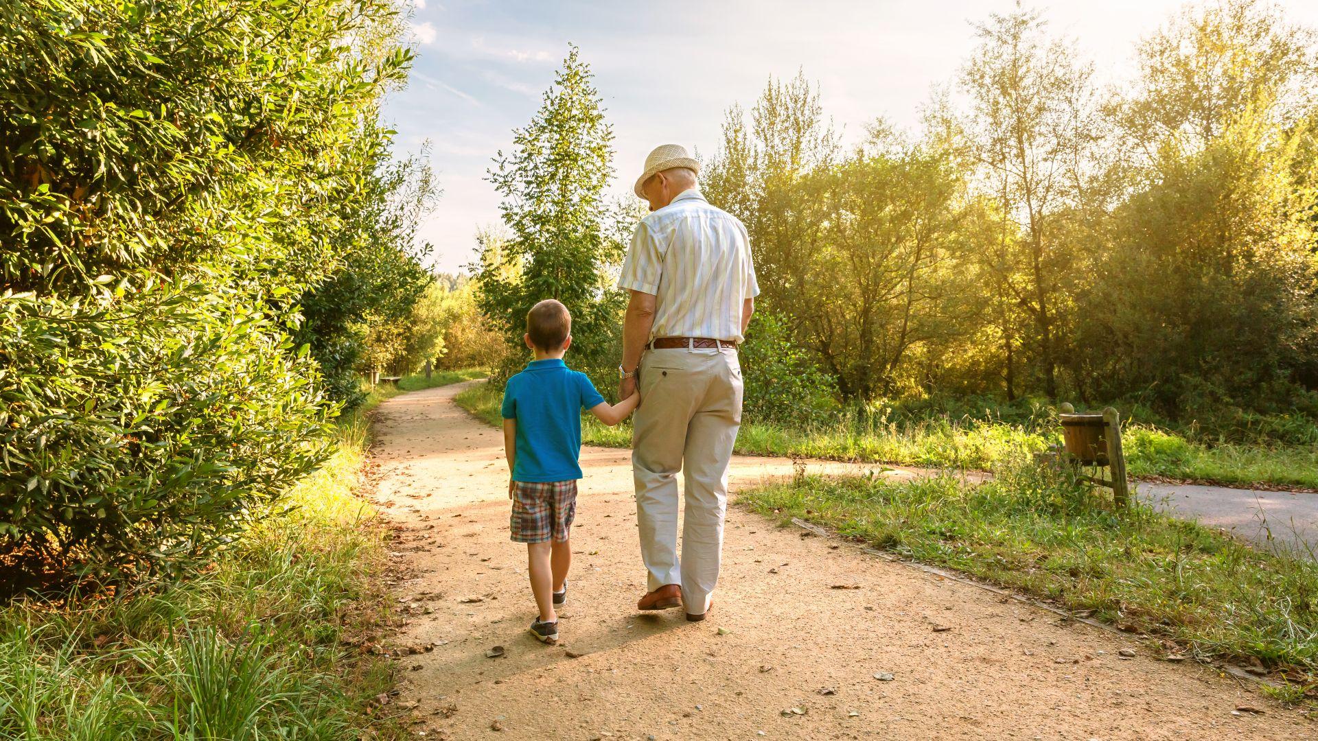 От 7 май НОИ смята коя е по-изгодната формула за пенсиониране