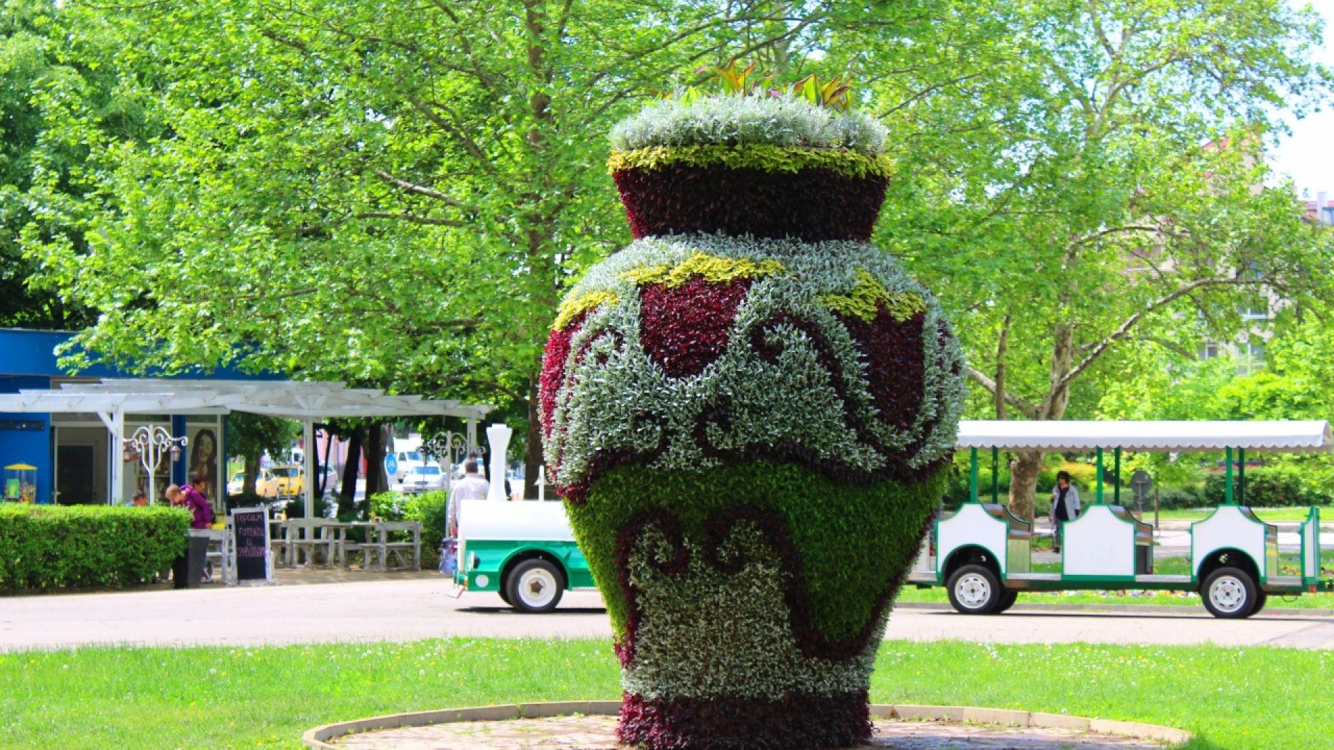 Общо 30 000 цветя красят Вазата в Парка на младежта