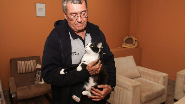Приятелят на котките Асен Асенов: Те са родени началници, трябва да сме готови да ги понесем