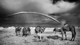 Сахара като от приказките на Шехерезада