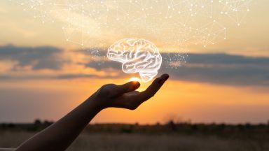 Антибиотиците забавяли развитието на Алцхаймер