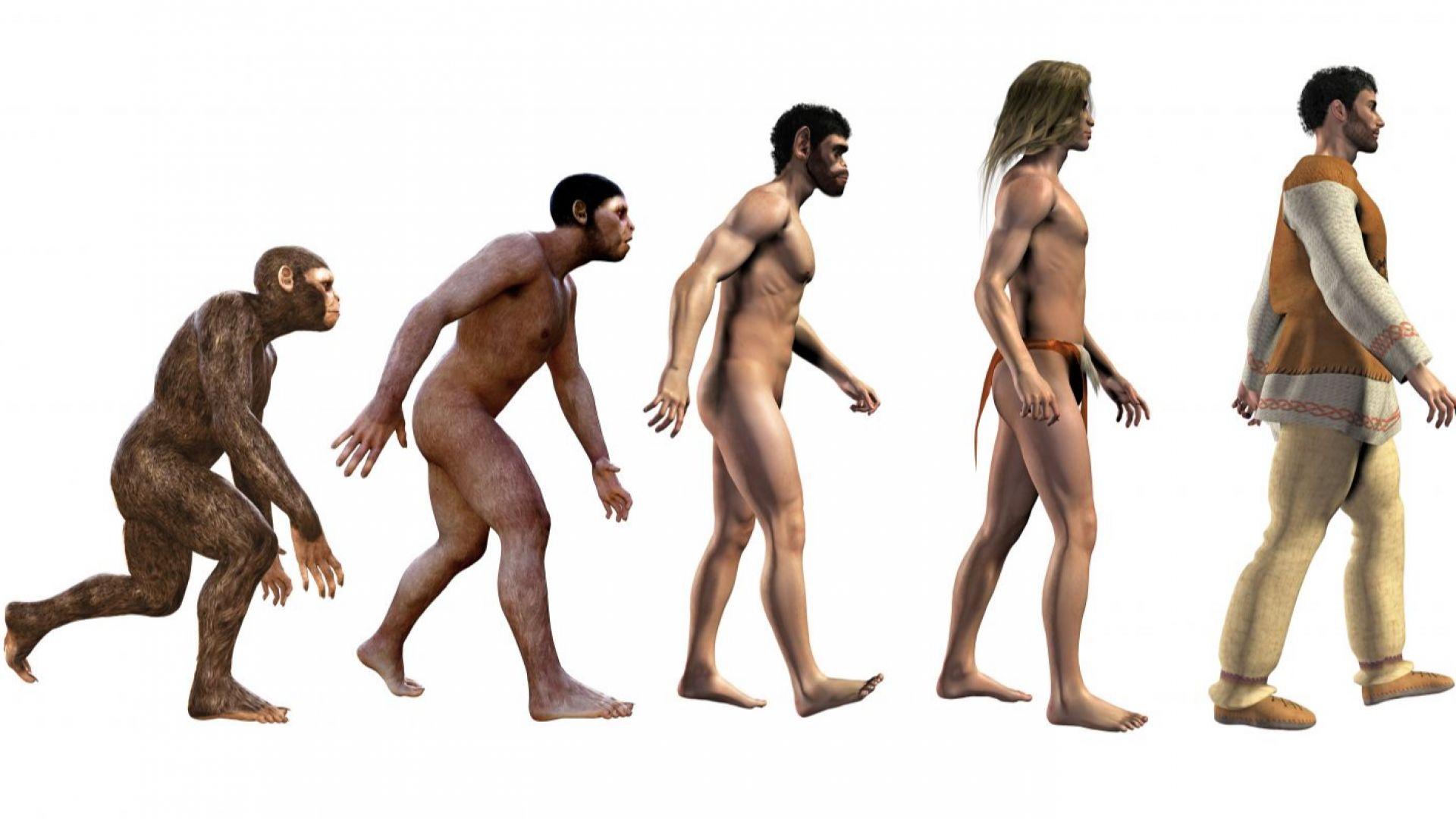Експлозии на свръхнови причинили еволюцията на човека