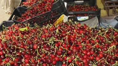 Русия внася праскови и череши от Северна Македония и Сърбия