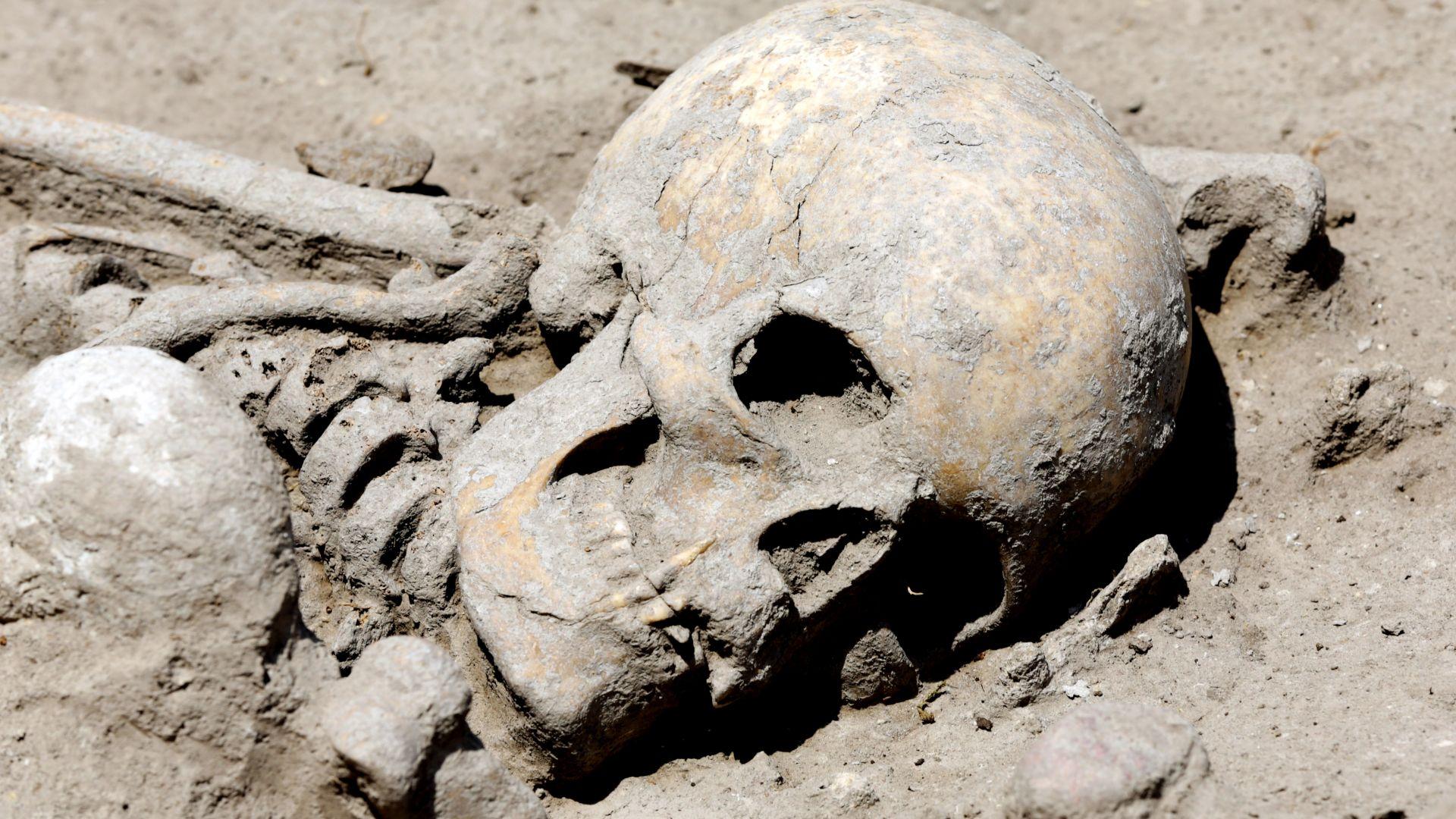 Откриха скелет на 7600 години в столичен квартал (снимки)