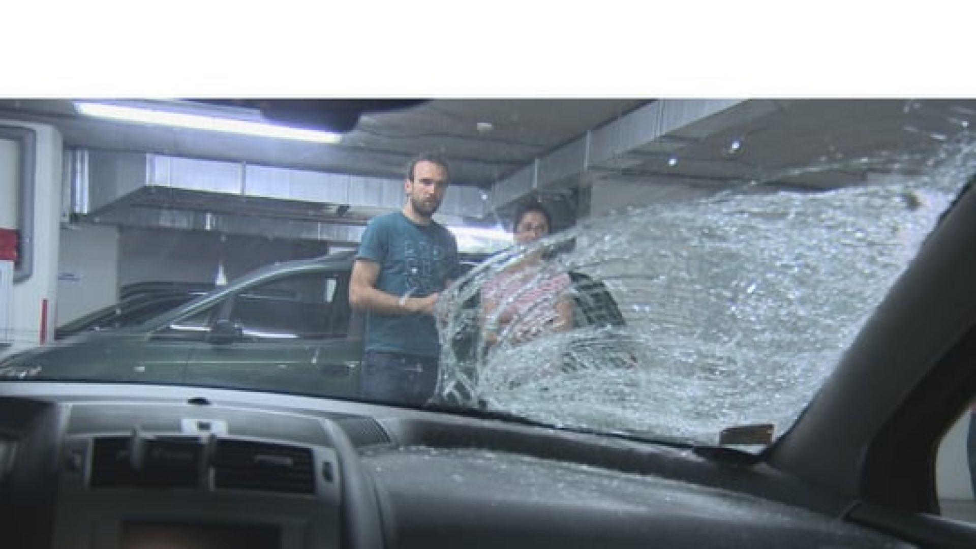 """Кон предизвика катастрофа с кола на магистрала """"Тракия"""""""