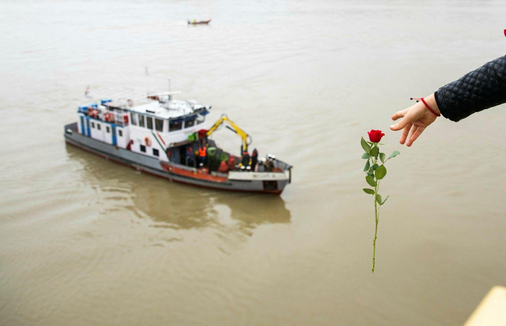 Жена хвърля роза в Дунав от моста Маргит по време на издирвателната операция