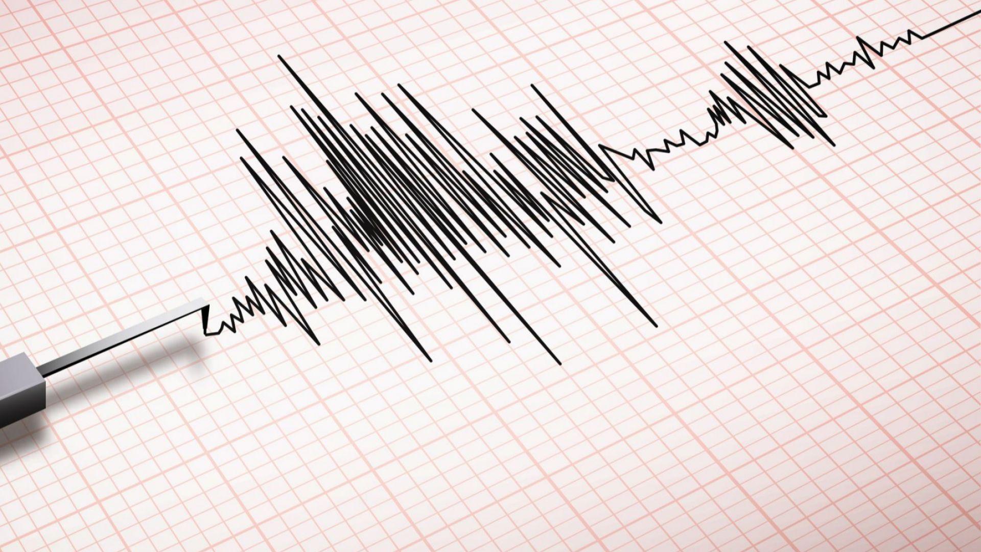 Земетресение с магнитуд 6,5 бе регистрирано днес край бреговете на