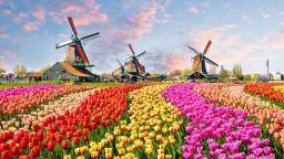 Ребрандирането на една държава: Защо Холандия стана Нидерландия