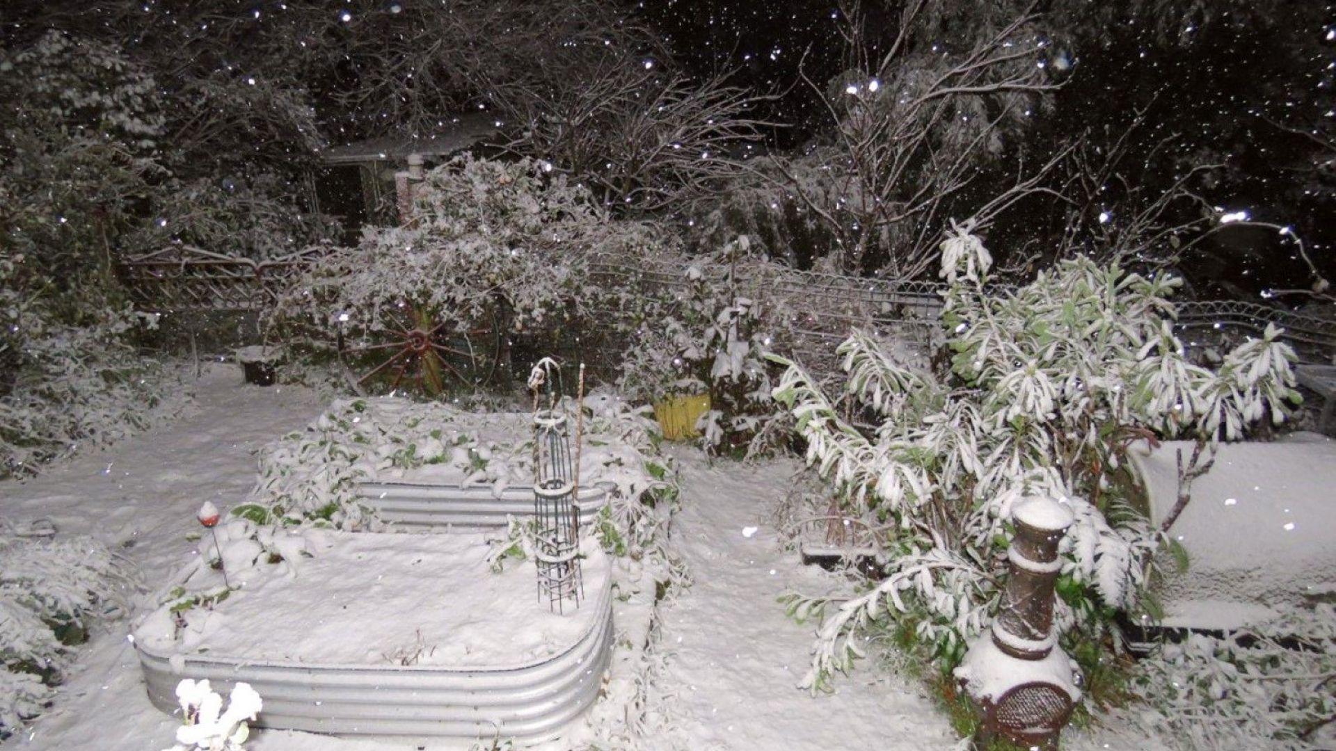 Лед и сняг сковаха субтропичната част на Австралия, Сидни подгизна от проливен дъжд