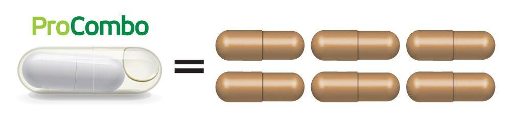 За разлика от обикновените пробиотици, при които на ден трябва да се пият по 3 до 6 капсули, за да се набави необходимото за здравето на корема, при ProCombo само 1 капсула е достатъчна