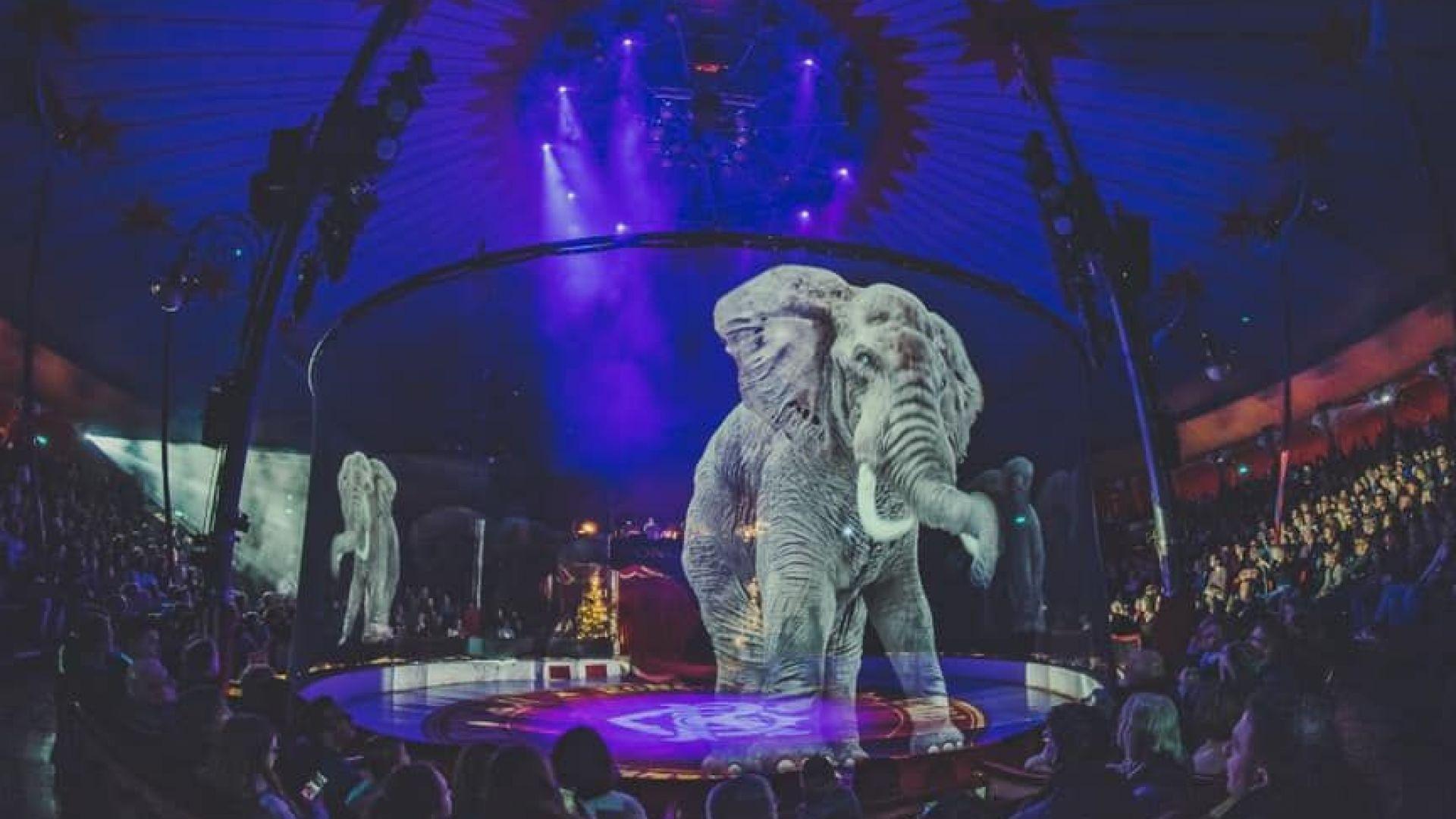 Замениха животните в цирк с техни холограми