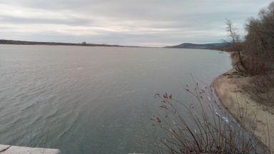 Високото ниво на Дунав увеличава популацията на риба, но пречи на риболова