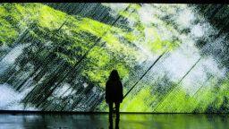 В Ермитажа откриха изложба с арт обекти, създадени от изкуствен интелект
