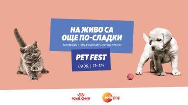 Домашните любимци и техните стопани в очакване на старта на Pet Fest