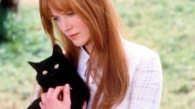 Никол Кидман вземала котките си на екскурзия в раница