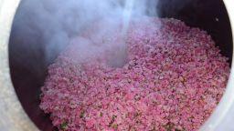 Как се добива българското злато – розовото масло