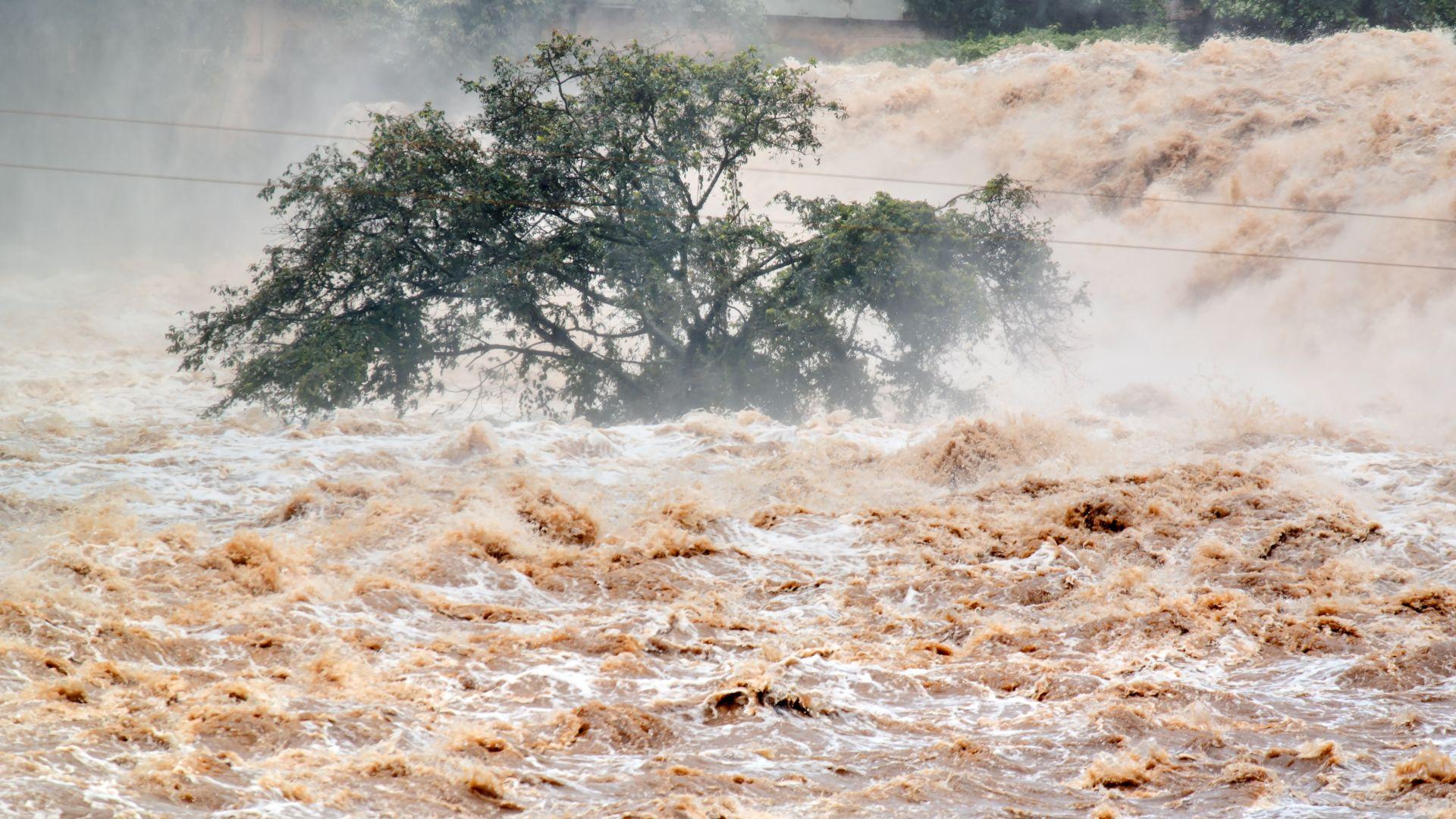 Река Шипа излезе от коритото си и заля русенско село