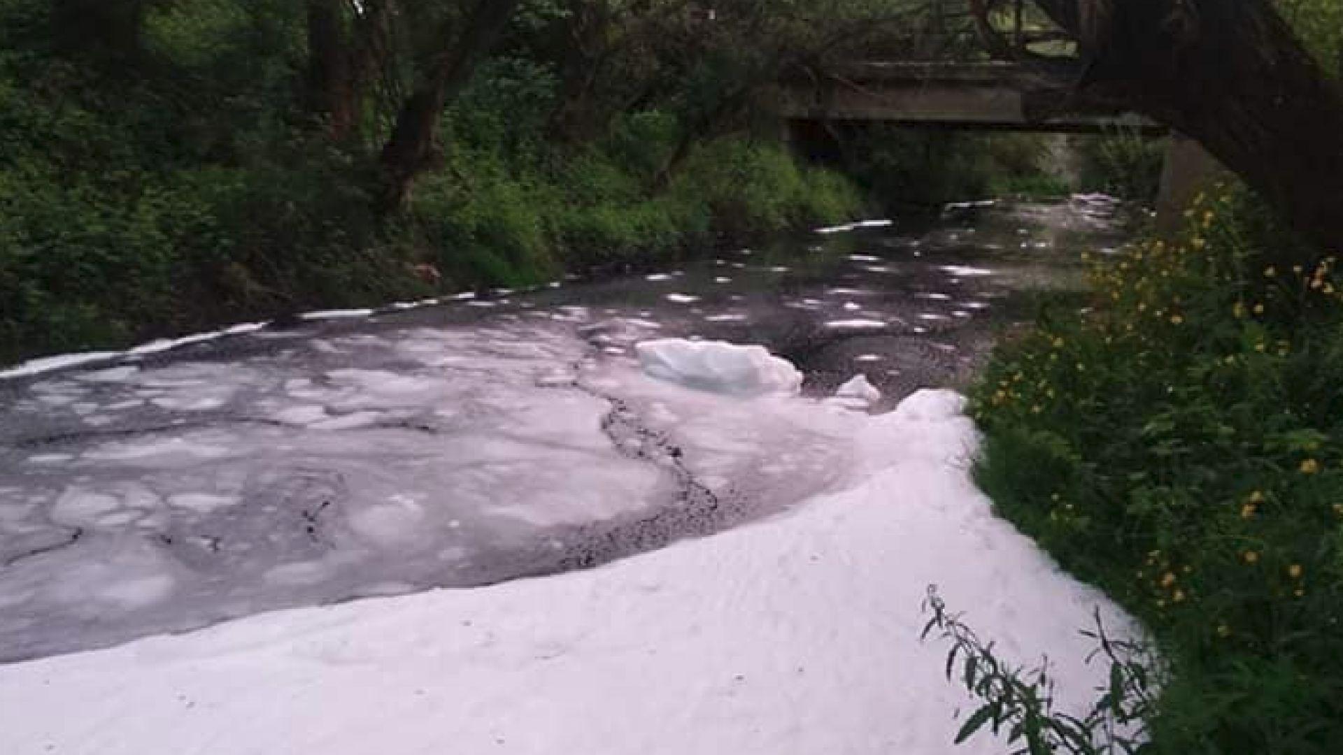Гъста бяла пяна покри река Струма в Перник (снимки)