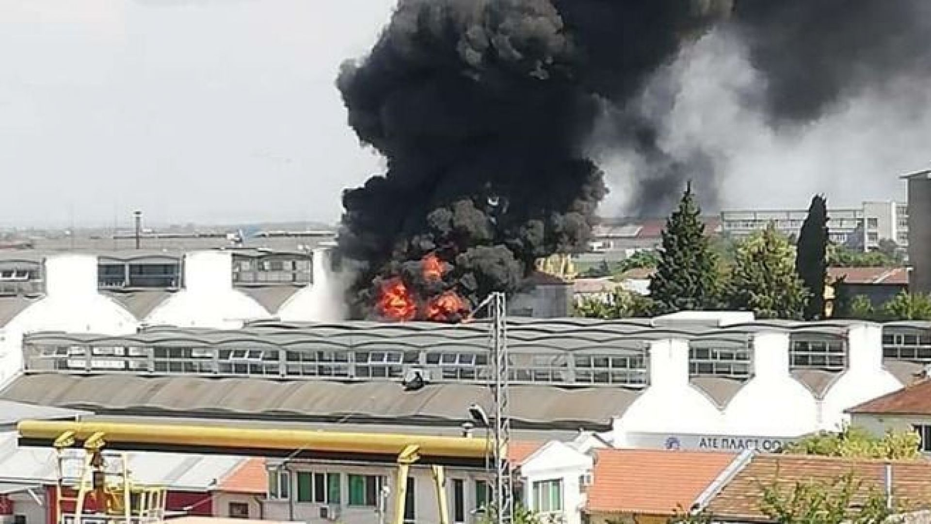 "Голям пожар избухна до завода за олио ""Бисер"""