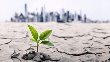 Ще се самоунищожим ли до 2050 година?