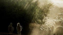 Вълшебното село на Марко Сгарби, което покорява