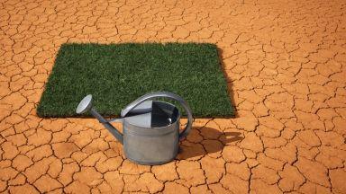 """""""Баркодът"""" на промяната в климата (галерия)"""
